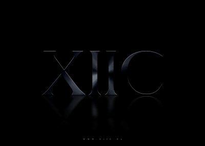 XIIC Logo